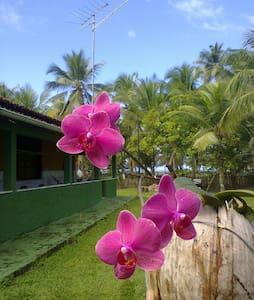 Casa de praia Shimbalaiê - Ilhéus