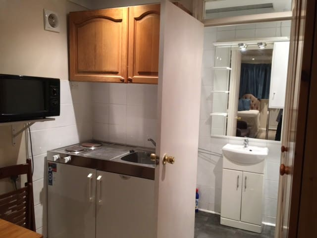 Quite, lovely, Studio flat /own entrance. - Londra - Daire