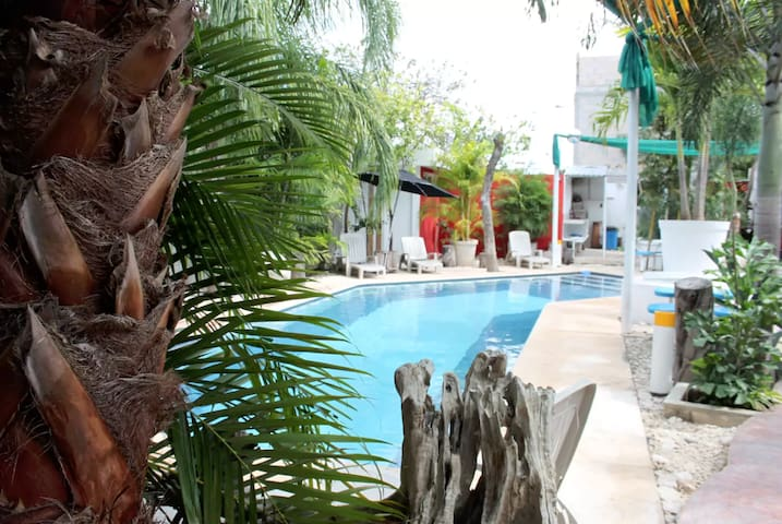 Great little studio - awesome pool, mayan greenery - Mérida - Apartment
