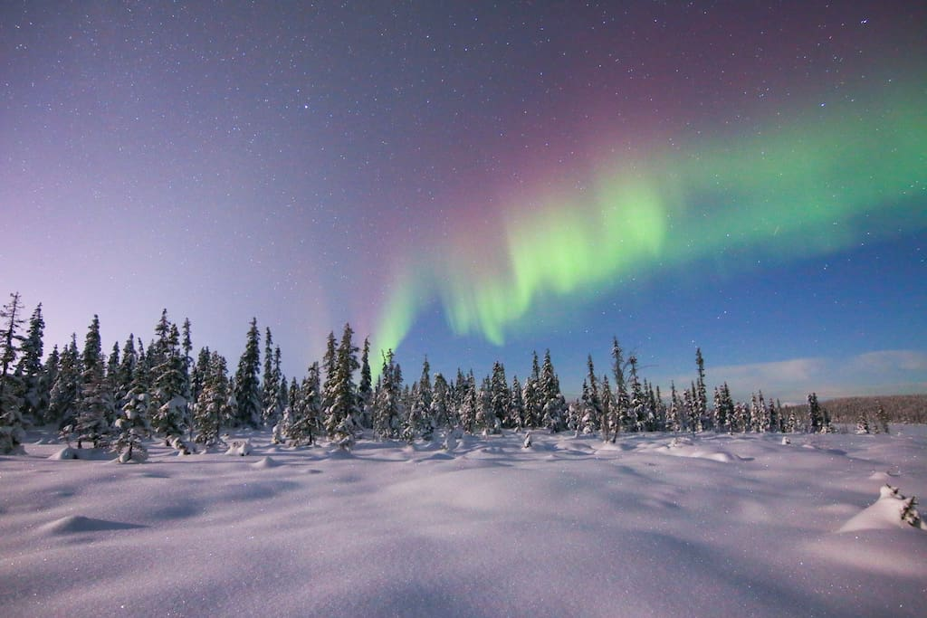 Northern lights during winter