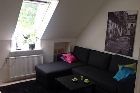 Dejligt møbleret værelse med wifi - Odense SØ