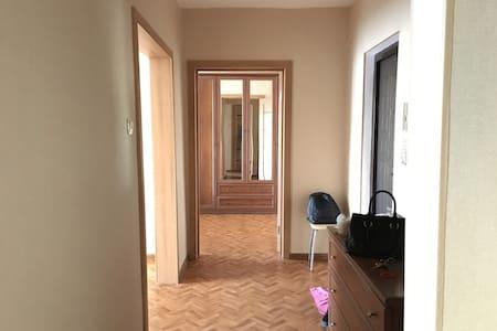 Чистая, 2комнатная квартира - Иркутск - 公寓