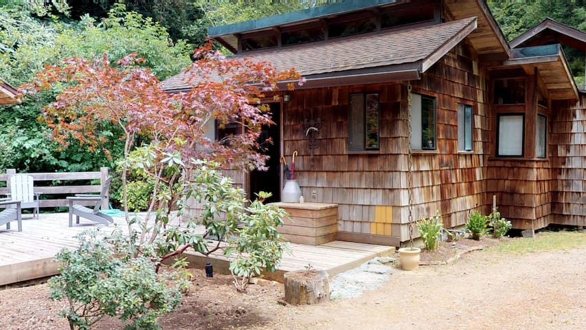 The cabin is surrounded by a lush Redwood forest.