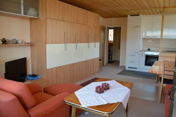 Ferienwohnung Gabriela 25 Defuns Brigels, (Breil/Brigels), 65050B, Apartment with Shower/Bath/Toilet for max. 4 People