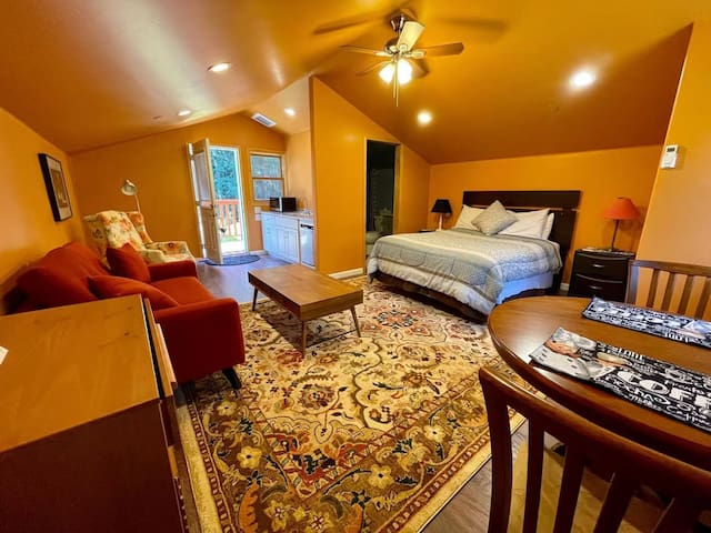 A spacious apartment, with queen bed, nice rug, table and chairs, sofa and coffee table, easy chair and convenience wet bar.