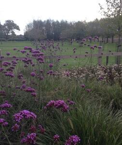 Landelijke woning 'a secret garden' in Torhout