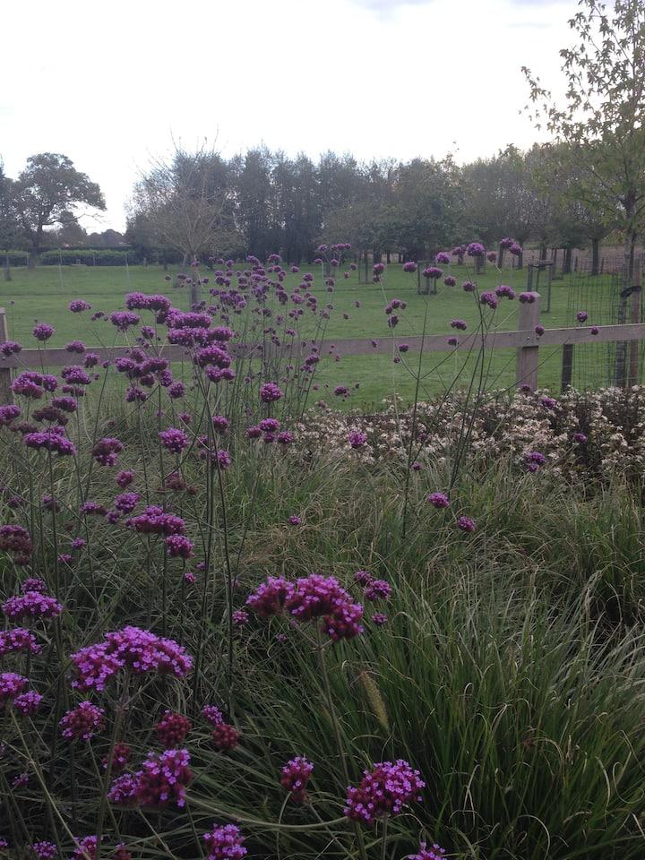 Gezellige woning 'a secret garden' in Torhout