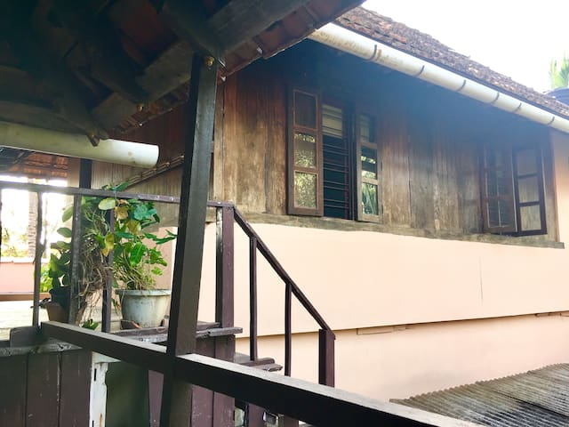 the available wooden cabin is on top of our home