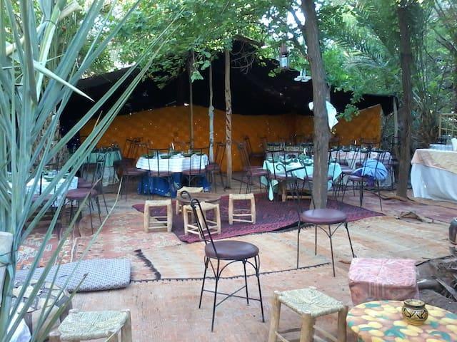 Bivouac et Tentes berbère à l'oasis de Fint - Ouarzazate - Tent