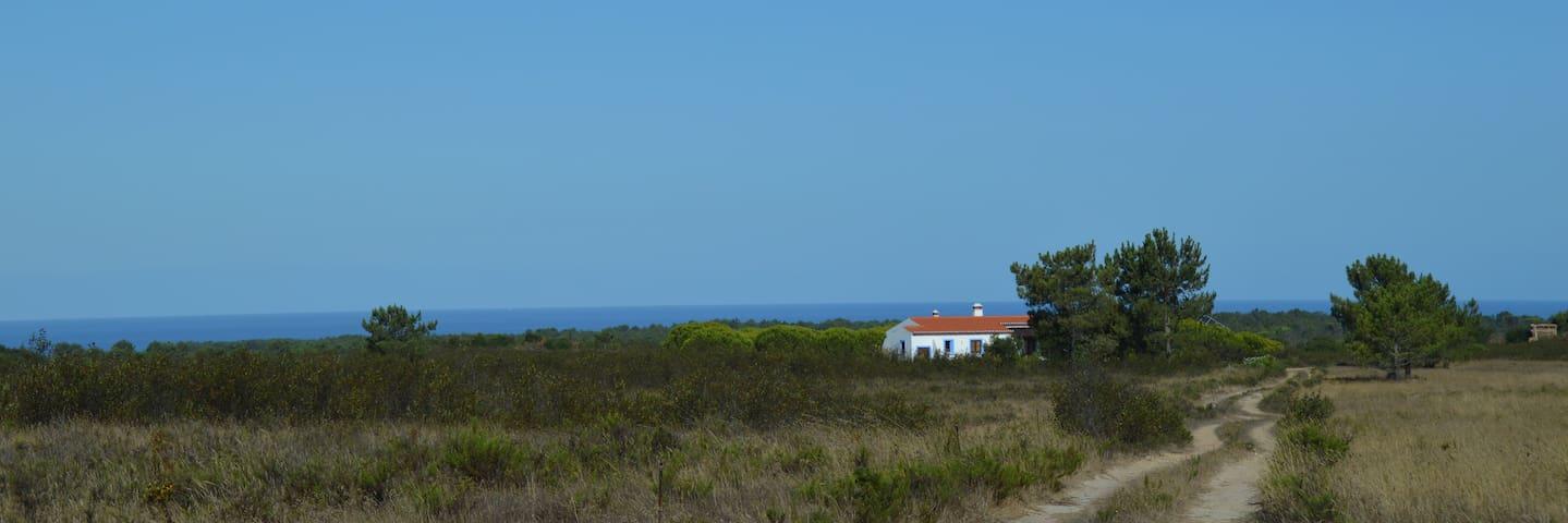 La casa azul - Rogil