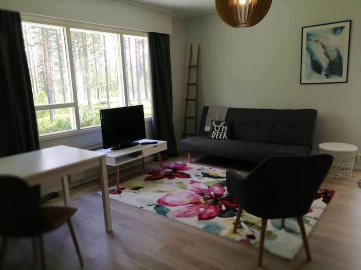 Aurora apartment 2