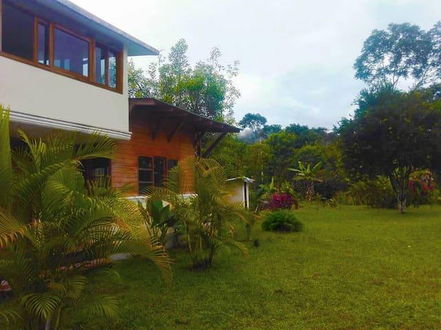 Amazonia y Espiritualidad