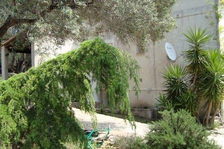 Charmant studio dans la campagne bonifacienne