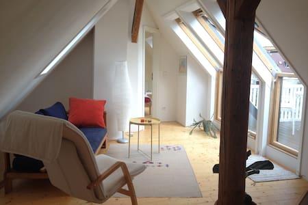Gemütliche, helle Maisonette-Etage mit Balkon - Schwetzingen - Overig