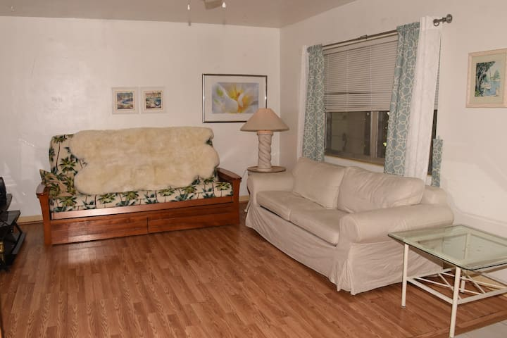 Enjoy staying in a home with your own private living room.  Queen Futon bed Thíck matress &  Couch is a full bed.