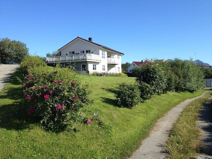 Hus midt i Lofoten