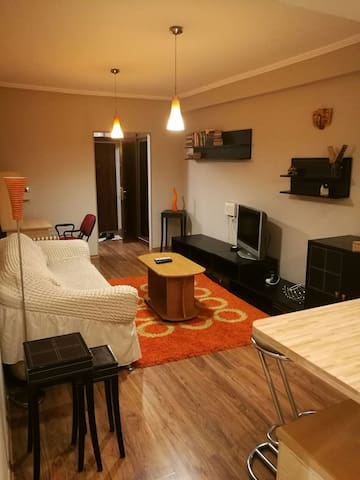 One bedroom apartment in the city center (Arbat)