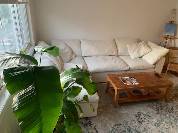 Bright & Spacious Apartment in Williamsburg!