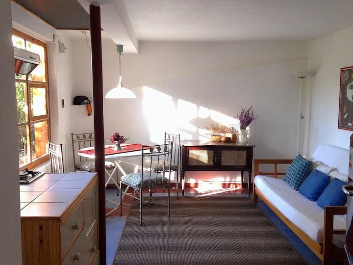 Apartamento entero lavandas y bosque en El Ingenio