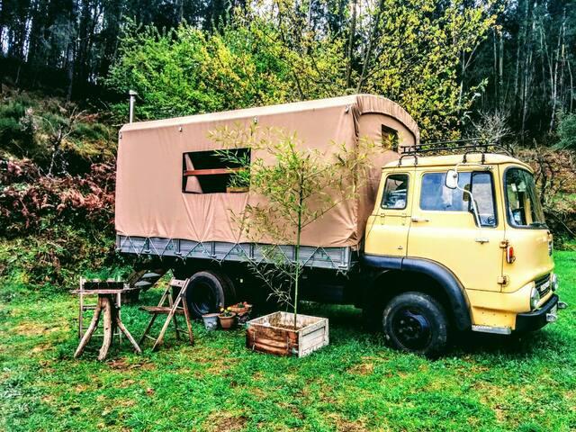Classic Bedford Truck - Pedrógão Grande - Autocaravana