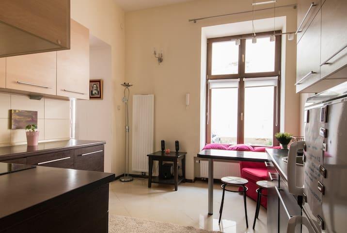Modern flat at Piotrkowska street - Łódź - Apartment