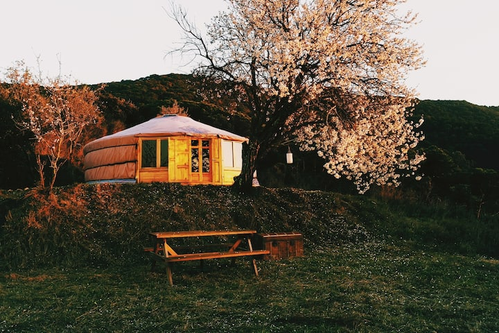 Yurt inside a natural park near the beach