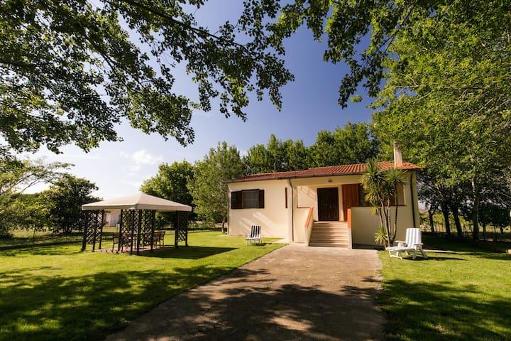 Casale in azienda agricola - Capalbio Scalo - House