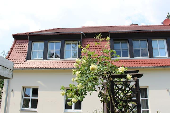Apartment am Großen Garten - dresdnerferienwohnung