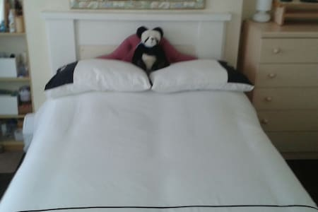 double room very spacious - Aberystwyth - Bed & Breakfast