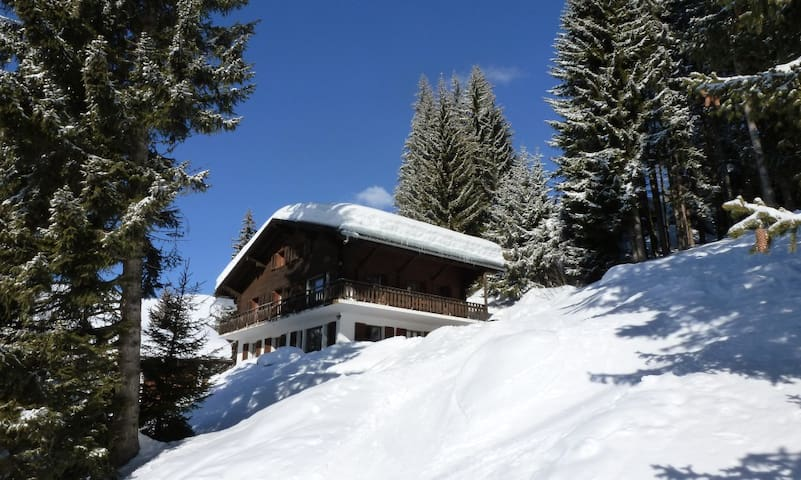 Dahu rez – Little Ski-in/Ski-out flat in Verbier