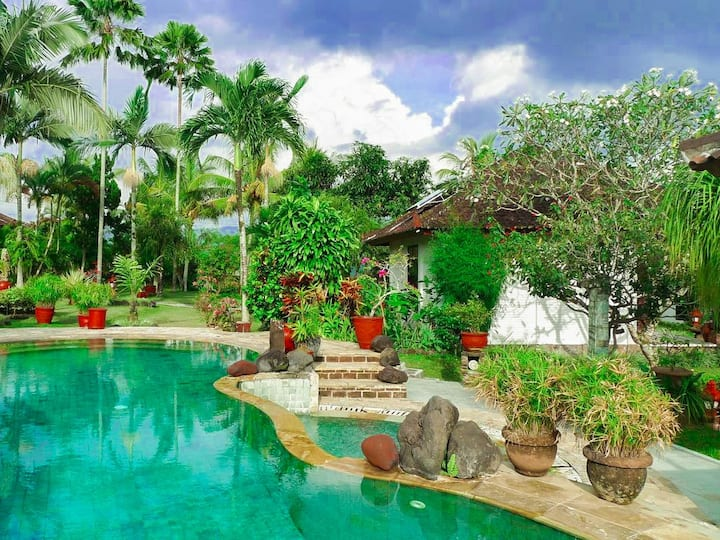 Cabe Bali Cottage - Rice Field & Mount Agung View