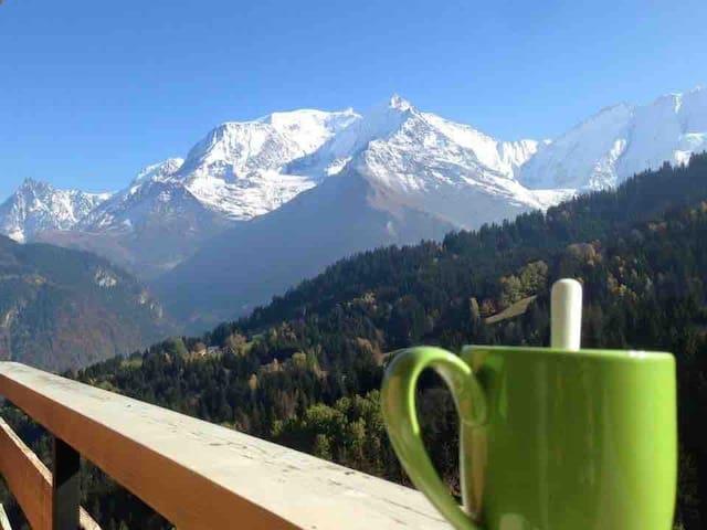 Location vue panoramique Mont Blanc
