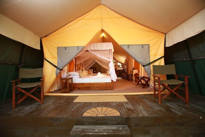 Yala safari and relax camping.