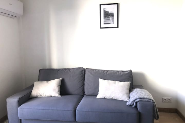 Couch in the living room