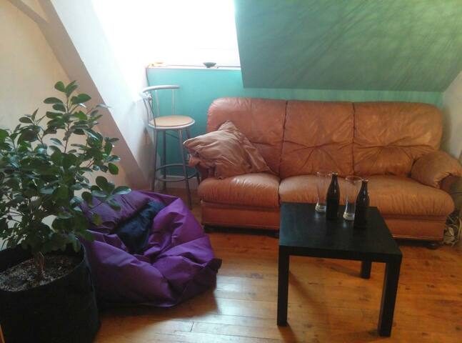 1 bedroom apt, center of Mulhouse, equiped kitchen - Mulhouse
