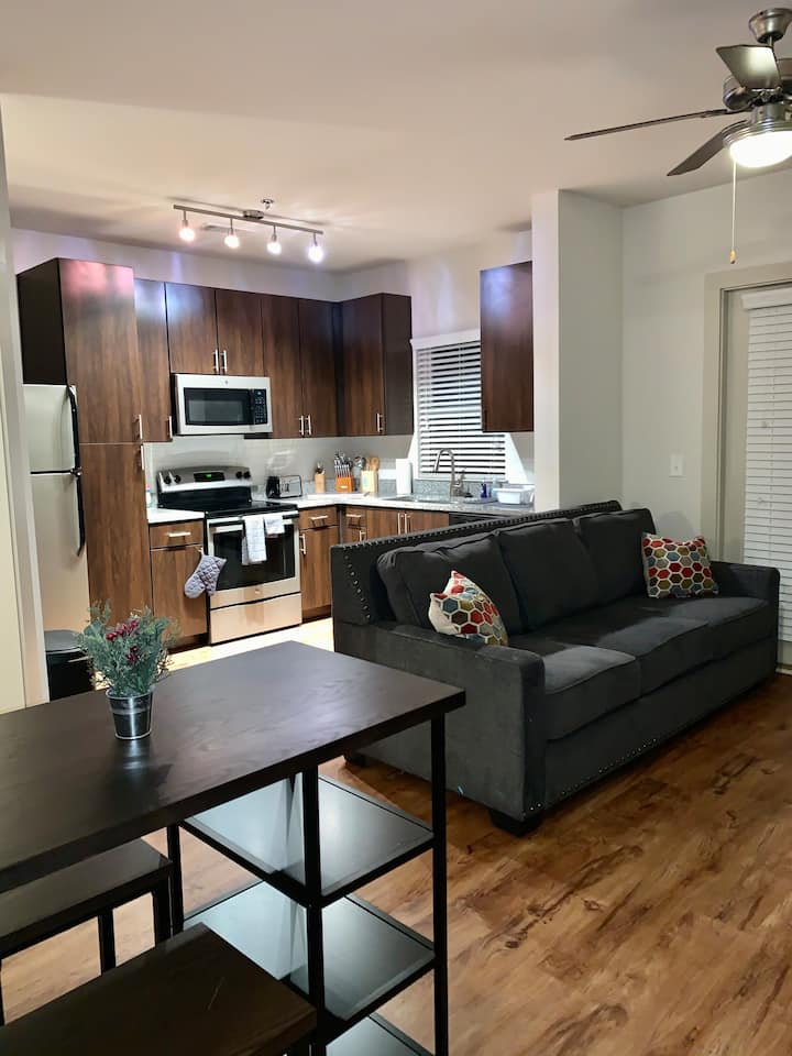 Luxury apartment in walking distance of Emory!