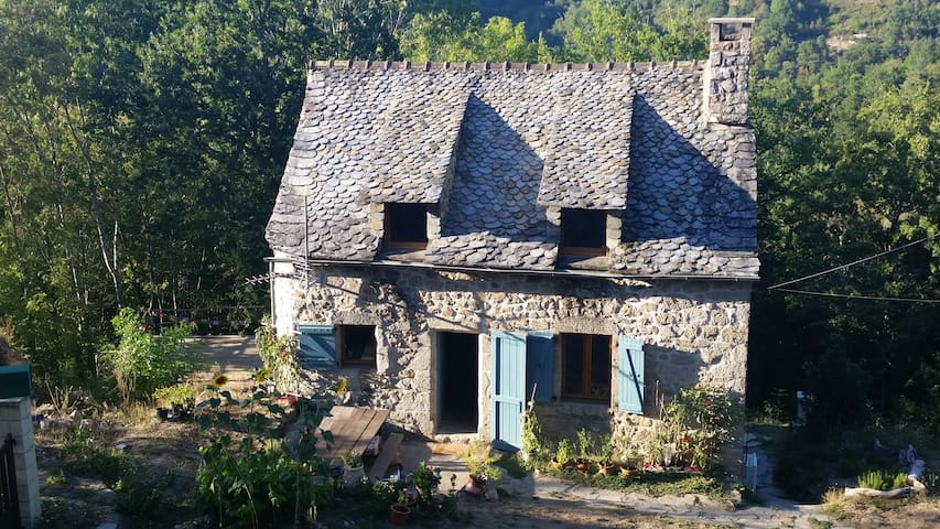 Rustic Woodland Cottage with Beautiful Views - Saint-Amans-des-Cots - Dom