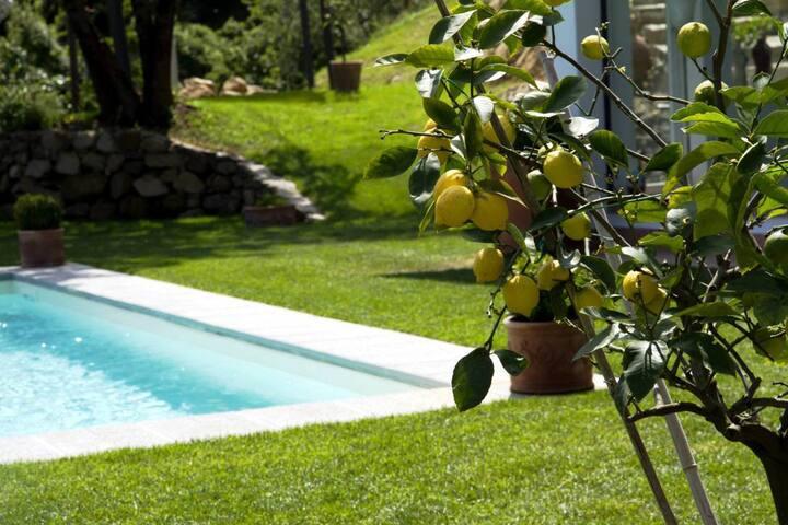 Villa Paolina, villa with pool - Florence - Villa