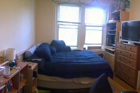 Professorial Suite near Harvard - Cambridge - Apartment