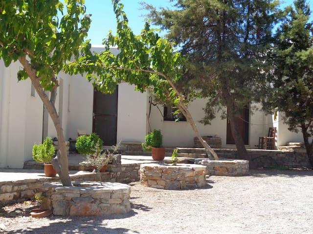 Nikolas - Naxos - Gästhus