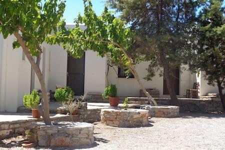 Nikolas - Naxos - 民宿