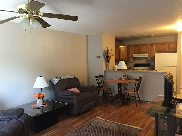 Comfortable 2BD 2BR Apartment - Wise - Byt