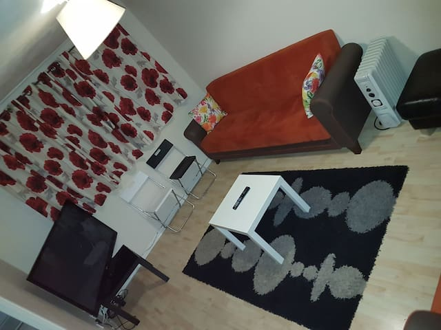 HOLIDAY HOME! from £52/ (Entire flat! + Spare bed) - London - Flat