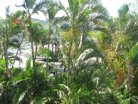 Welcome to the Paradise - Centrally Located Manoa