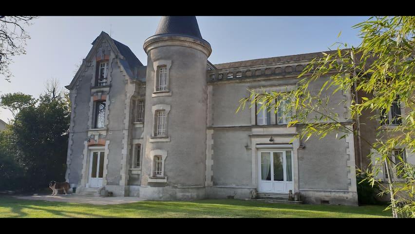 Cognac ancienne maison de négoce- jardin 2000 m2