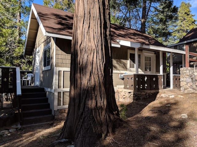 Antlers Inn Cabin 3
