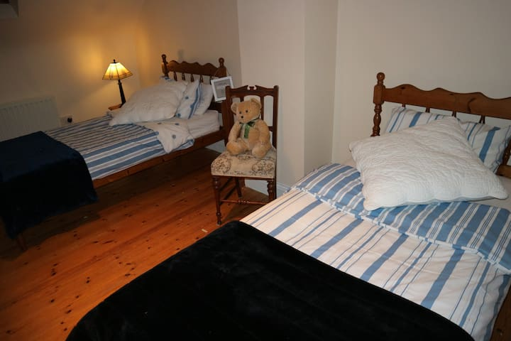Two single beds room, 13mins drive from Cork City