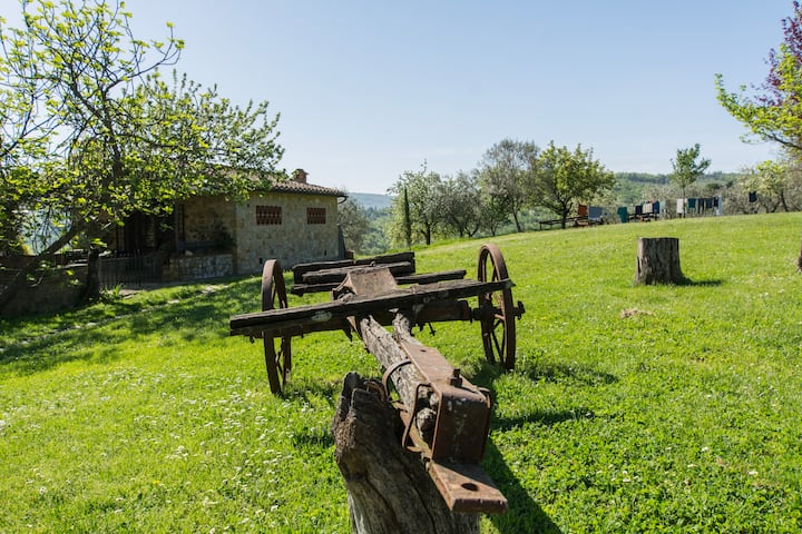 Agriturismo in Chianti