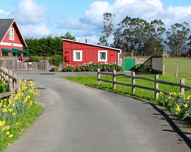 Red Barn Cottage - Ferndale - Ferndale - Hospedaria