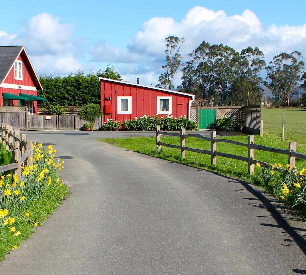 Welcome to The Red Barn Cottage! The guesthouse is on the right with the green gate.